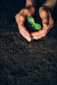Sustainable Life